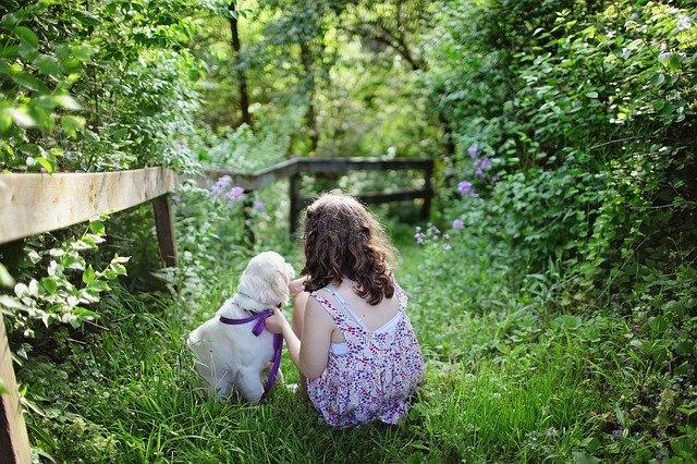 איך מכינים את הילדים - לקראת אימוץ כלב